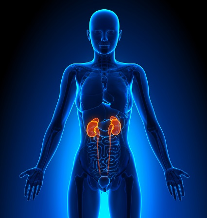 Kidney disease following Nexium/PPI treatment
